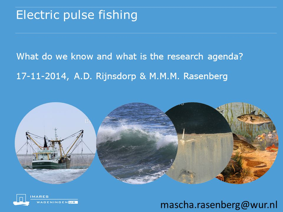 Electric pulse fishing What do we know and what is the research agenda.
