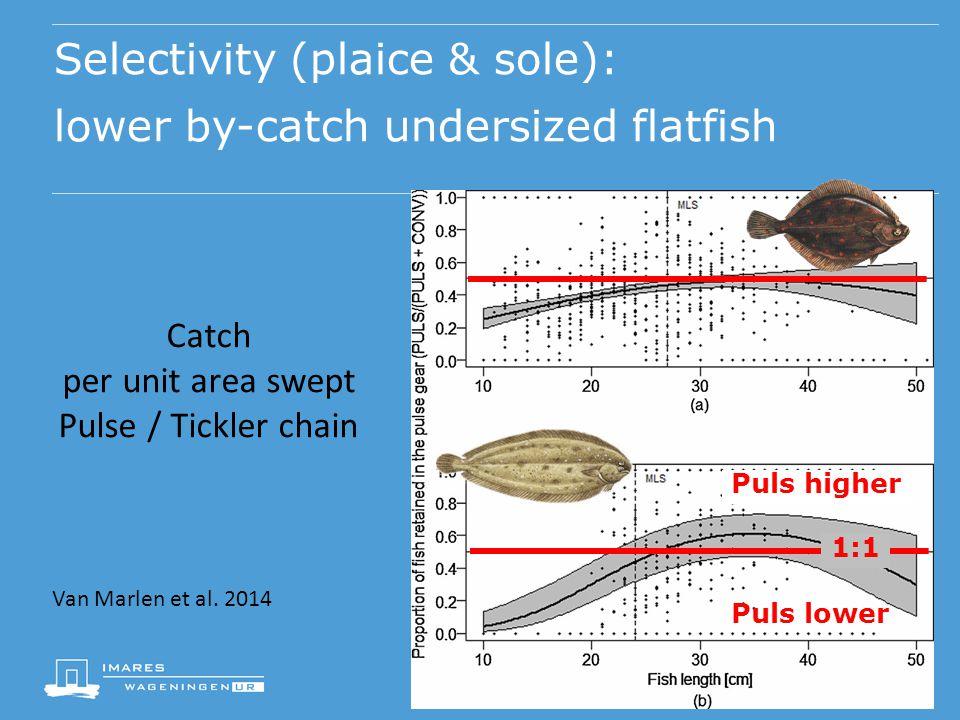 Selectivity (plaice & sole): lower by-catch undersized flatfish Van Marlen et al. 2014 Schol Tong Catch per unit area swept Pulse / Tickler chain 1:1