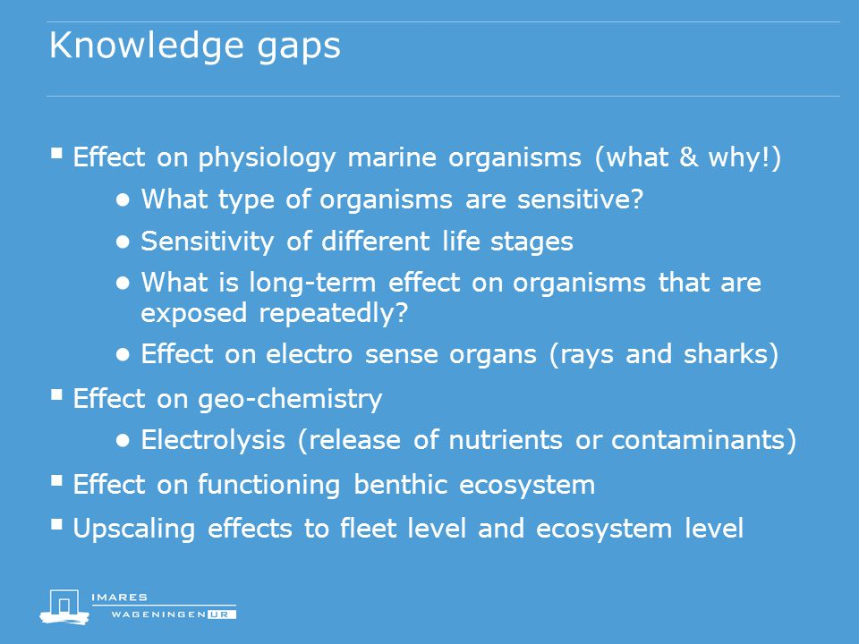 Knowledge gaps  Effect on physiology marine organisms (what & why!) ● What type of organisms are sensitive.