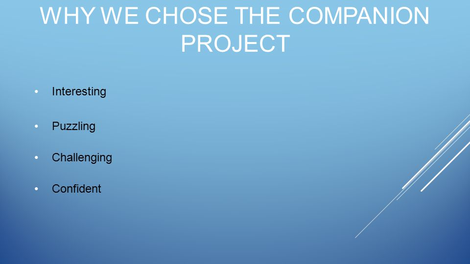 WHY WE CHOSE THE COMPANION PROJECT Interesting Puzzling Challenging Confident