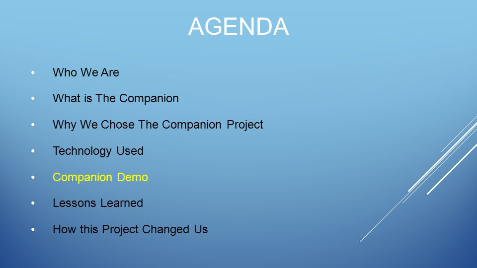 AGENDA Who We Are What is The Companion Why We Chose The Companion Project Technology Used Companion Demo Lessons Learned How this Project Changed Us