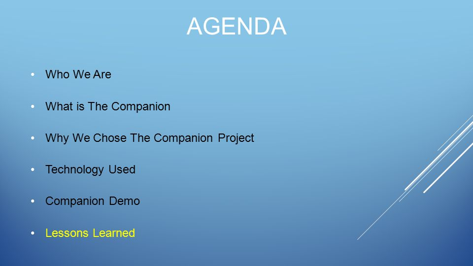 AGENDA Who We Are What is The Companion Why We Chose The Companion Project Technology Used Companion Demo Lessons Learned