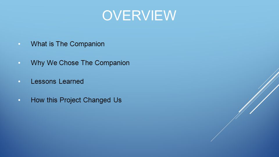 OVERVIEW What is The Companion Why We Chose The Companion Lessons Learned How this Project Changed Us
