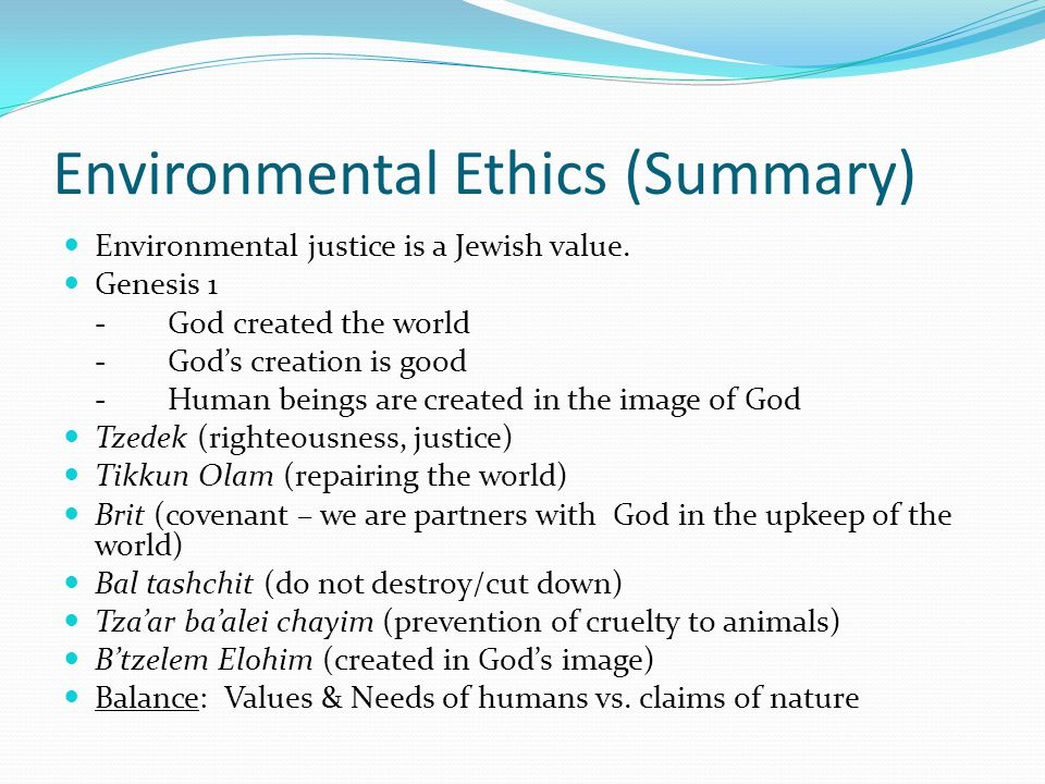 Environmental Ethics (Summary) Environmental justice is a Jewish value.