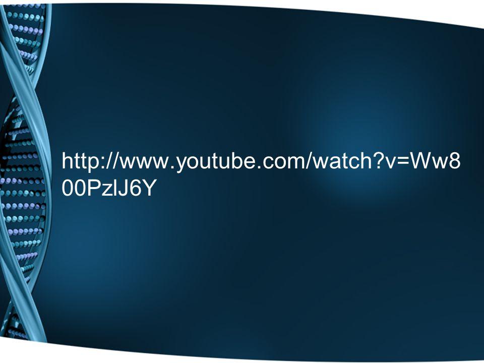 http://www.youtube.com/watch v=Ww8 00PzlJ6Y