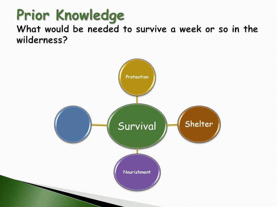 Survival Protection Shelter Nourishment