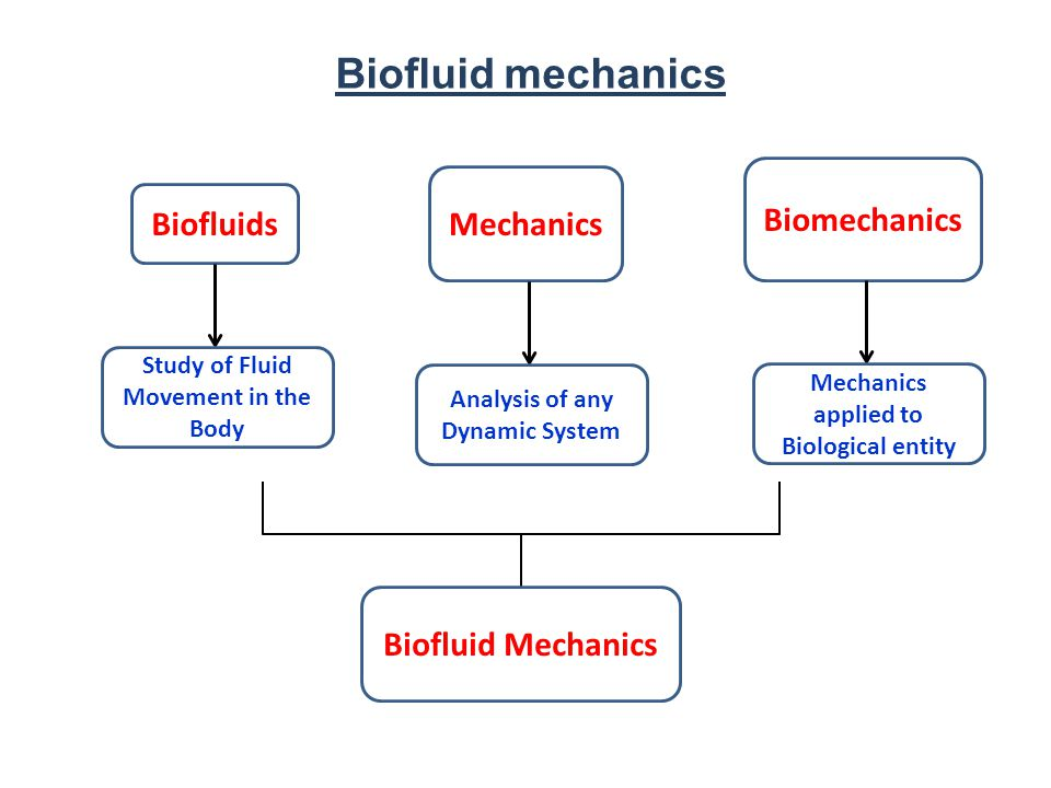 Biofluid mechanics Biofluids Mechanics Biomechanics Study of Fluid Movement in the Body Analysis of any Dynamic System Mechanics applied to Biological