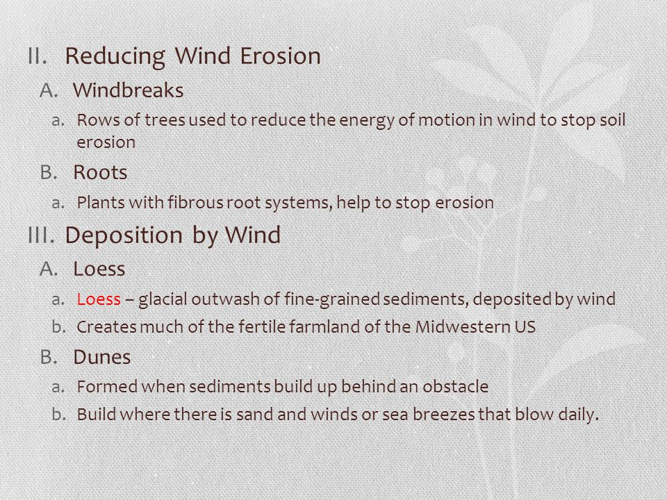 II.Reducing Wind Erosion A.Windbreaks a.Rows of trees used to reduce the energy of motion in wind to stop soil erosion B.Roots a.Plants with fibrous r