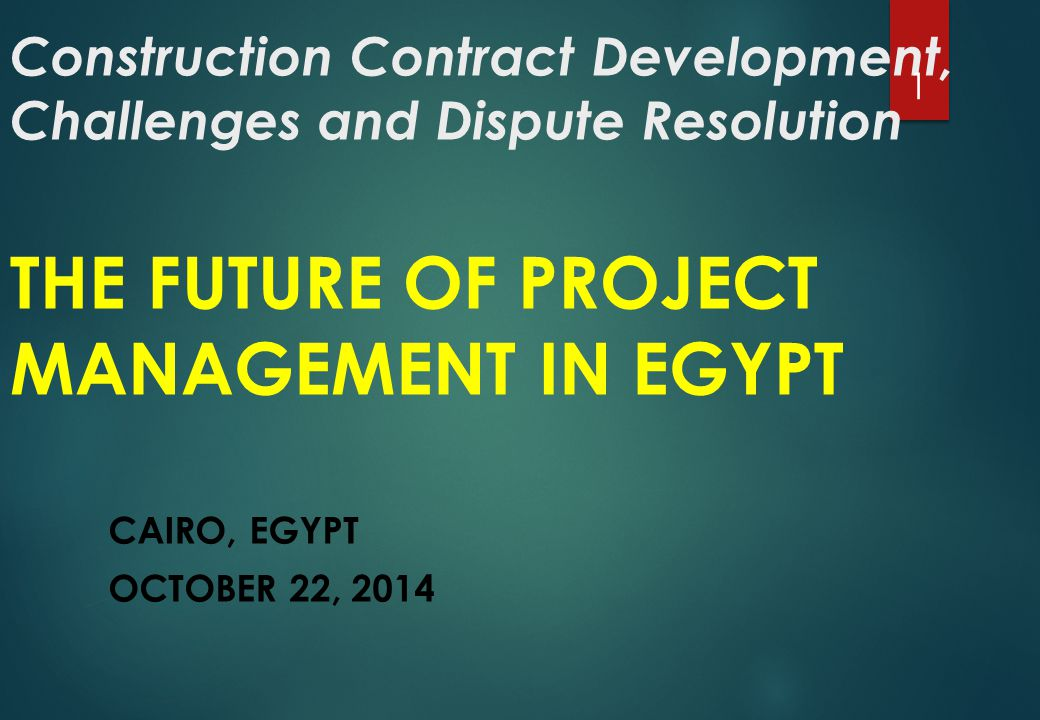 EGYPT's FACTS  Total Population 85 783 000 (CAPMAS 2014)  Massive need for infrastructure projects: expensive- urgent- All over 2