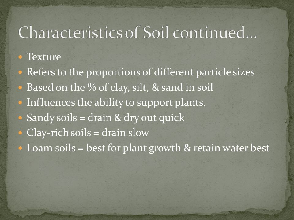 Texture Refers to the proportions of different particle sizes Based on the % of clay, silt, & sand in soil Influences the ability to support plants. S