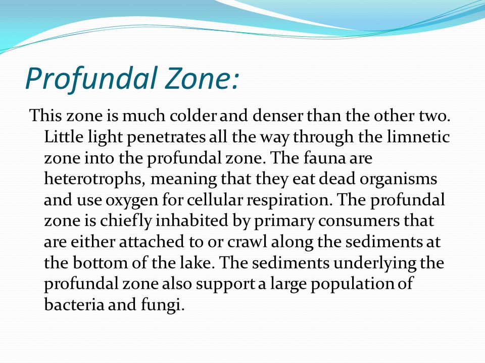 Fungi living in the profundal zone.