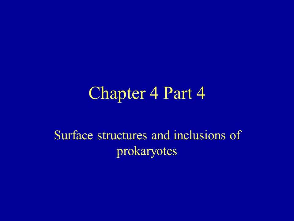 Chapter 4 Part 4 Surface structures and inclusions of prokaryotes