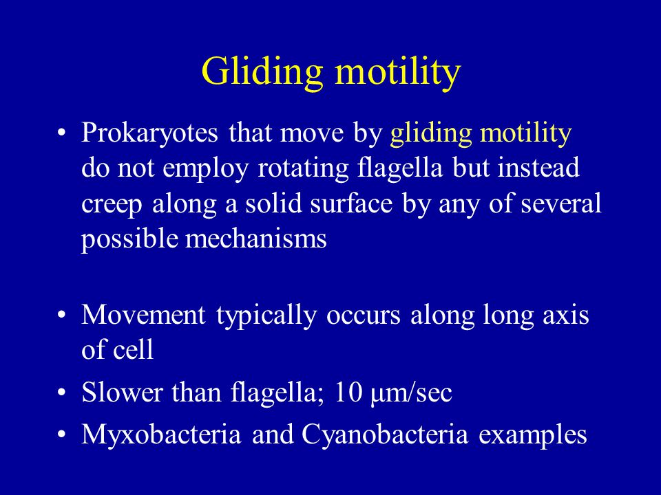 Gliding motility Prokaryotes that move by gliding motility do not employ rotating flagella but instead creep along a solid surface by any of several p