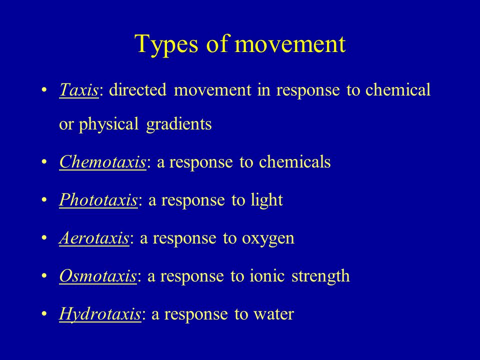 Types of movement Taxis: directed movement in response to chemical or physical gradients Chemotaxis: a response to chemicals Phototaxis: a response to