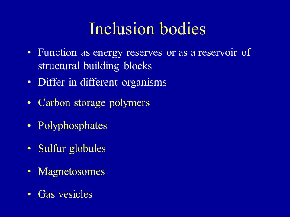 Inclusion bodies Function as energy reserves or as a reservoir of structural building blocks Differ in different organisms Carbon storage polymers Pol