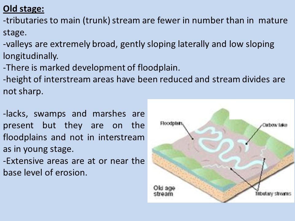 Old stage: -tributaries to main (trunk) stream are fewer in number than in mature stage. -valleys are extremely broad, gently sloping laterally and lo
