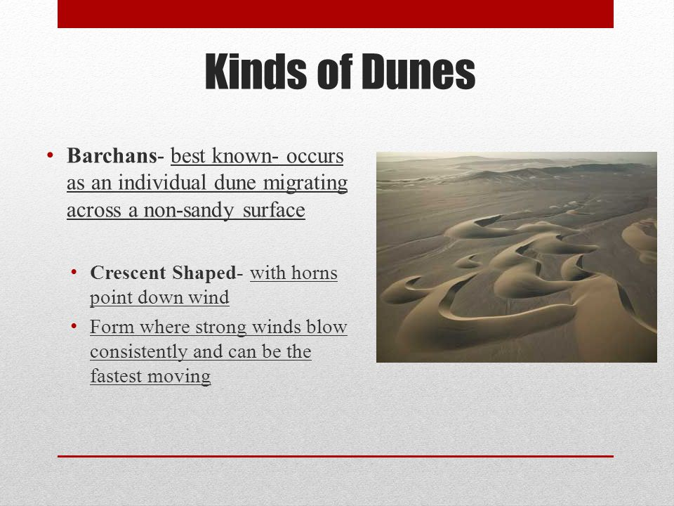 Barchans- best known- occurs as an individual dune migrating across a non-sandy surface Crescent Shaped- with horns point down wind Form where strong
