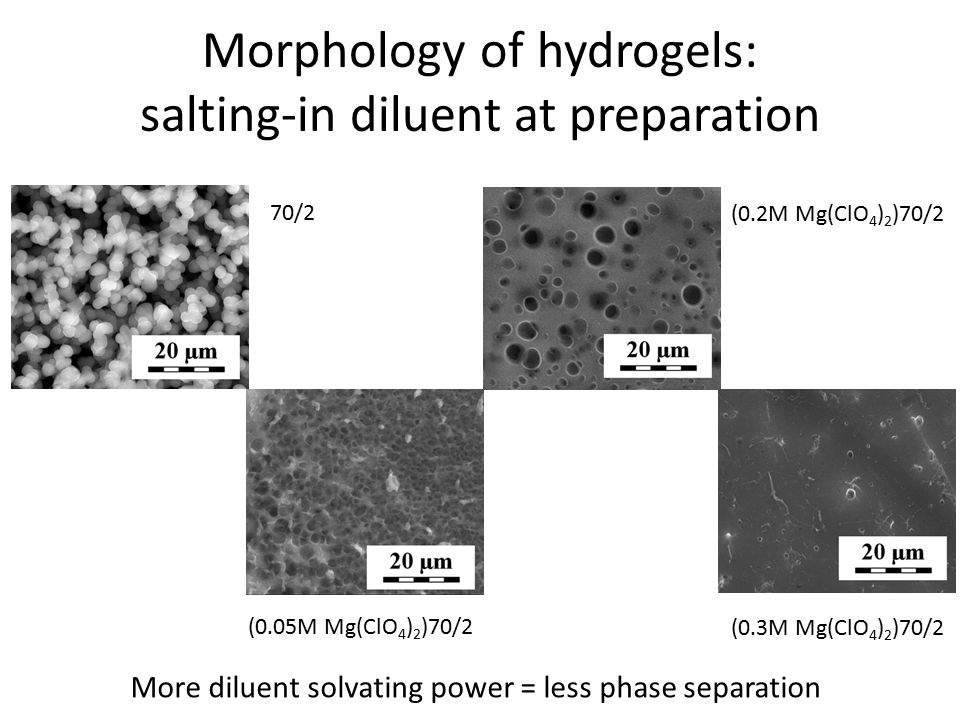 Morphology of hydrogels: salting-out diluent at preparation 60/1 (0.2M NaCl)60/1 (0.4M NaCl)60/1(0.45M NaCl)60/1 (0.475M NaCl)60/1 (0.5M NaCl)60/1(0.525M NaCl)60/1 (0.6M NaCl)60/1 Fine tuning – never observed before.