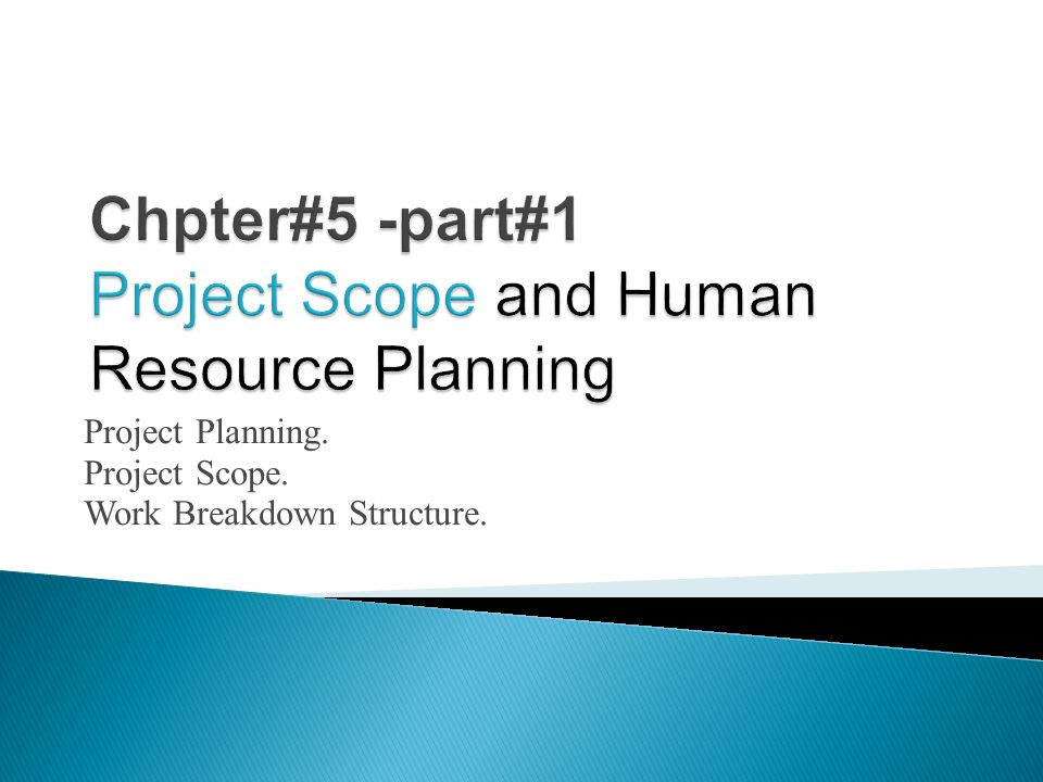 Project Planning. Project Scope. Work Breakdown Structure.