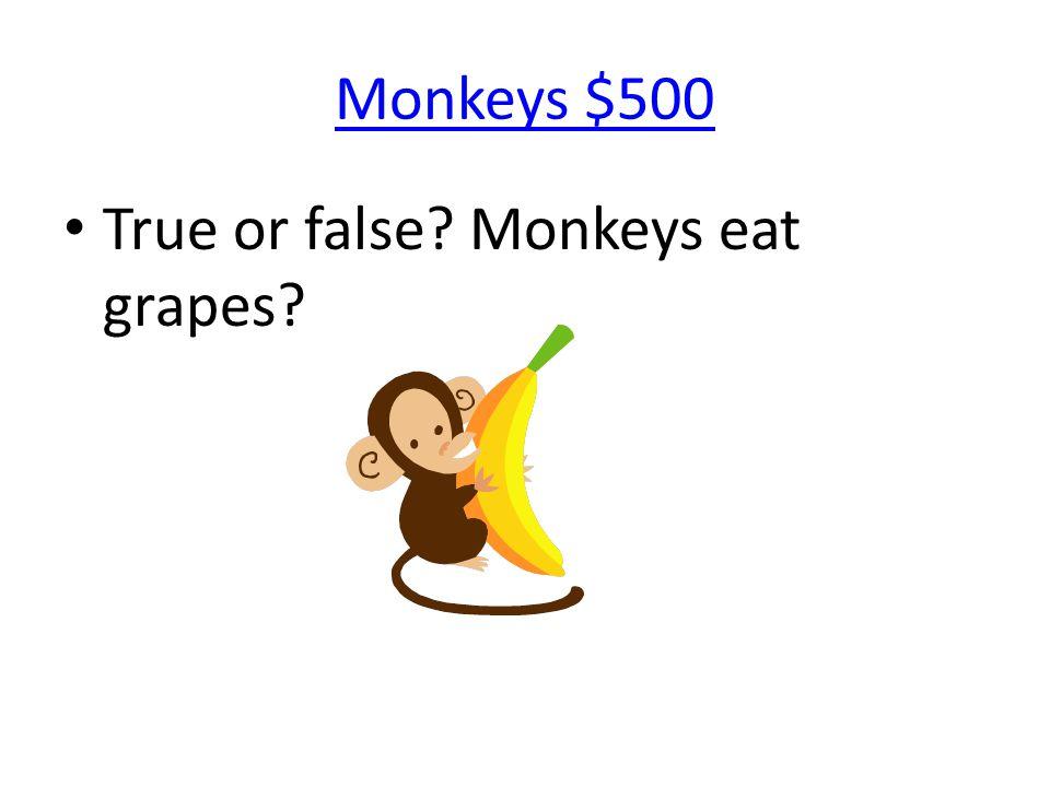 Monkeys $500 True or false? Monkeys eat grapes?