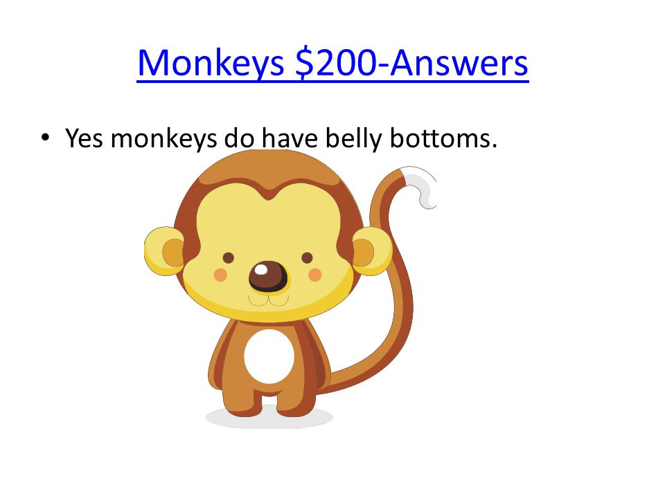 Monkeys $200-Answers Yes monkeys do have belly bottoms.