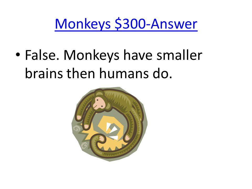 Monkeys $300-Answer False. Monkeys have smaller brains then humans do.