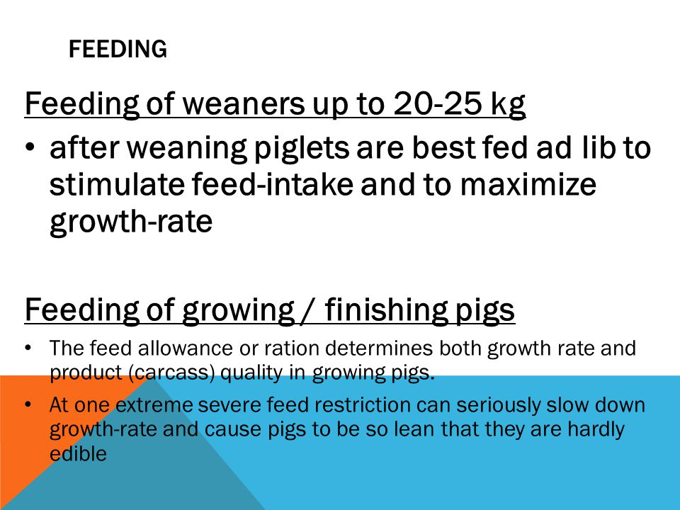 FEEDING Feeding of weaners up to 20-25 kg after weaning piglets are best fed ad lib to stimulate feed-intake and to maximize growth-rate Feeding of growing / finishing pigs The feed al­lowance or ration deter­mines both growth rate and product (car­cass) quality in growing pigs.