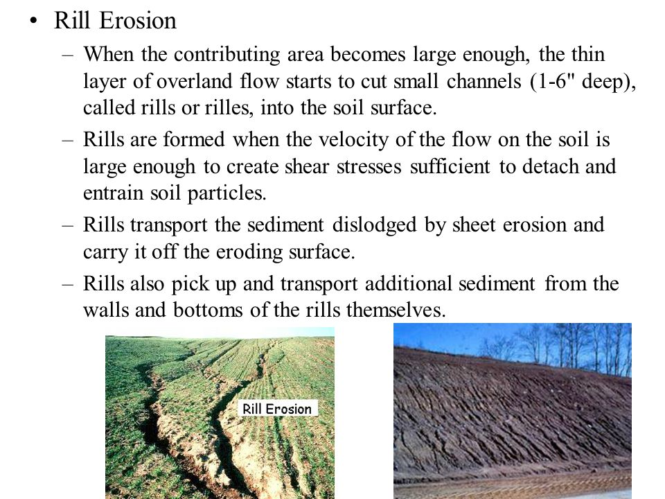 Rill Erosion –When the contributing area becomes large enough, the thin layer of overland flow starts to cut small channels (1-6 deep), called rills or rilles, into the soil surface.