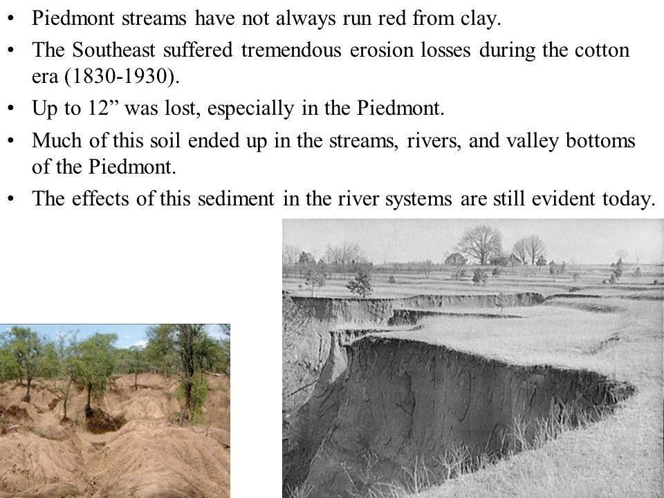 Piedmont streams have not always run red from clay.