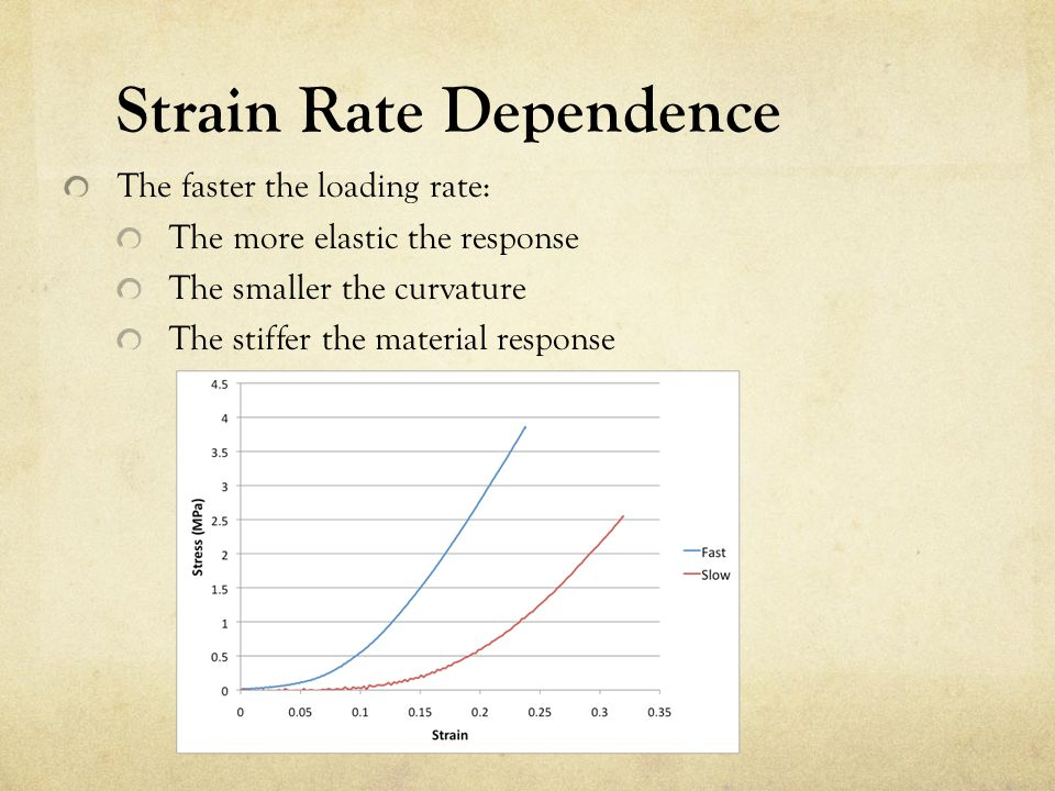 Strain Rate Dependence The faster the loading rate: The more elastic the response The smaller the curvature The stiffer the material response