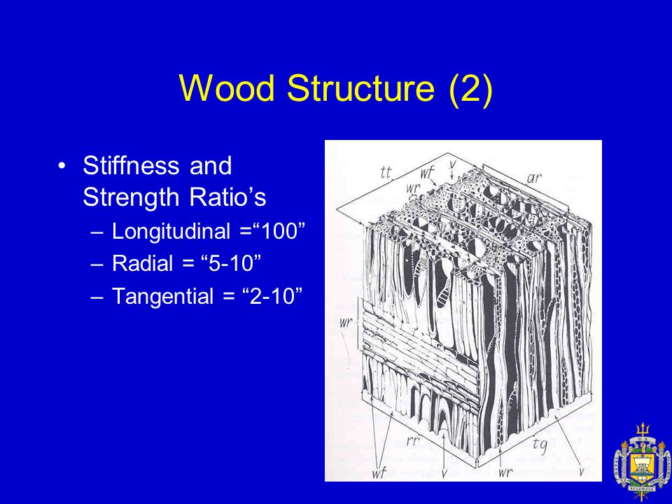 Wood Structure (2) Stiffness and Strength Ratio's –Longitudinal = 100 –Radial = 5-10 –Tangential = 2-10