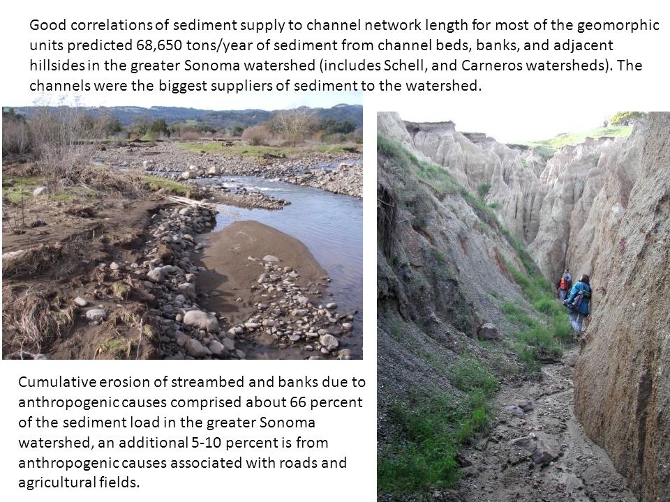 Good correlations of sediment supply to channel network length for most of the geomorphic units predicted 68,650 tons/year of sediment from channel beds, banks, and adjacent hillsides in the greater Sonoma watershed (includes Schell, and Carneros watersheds).