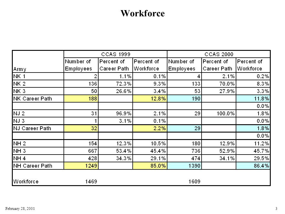February 28, 20013 Workforce