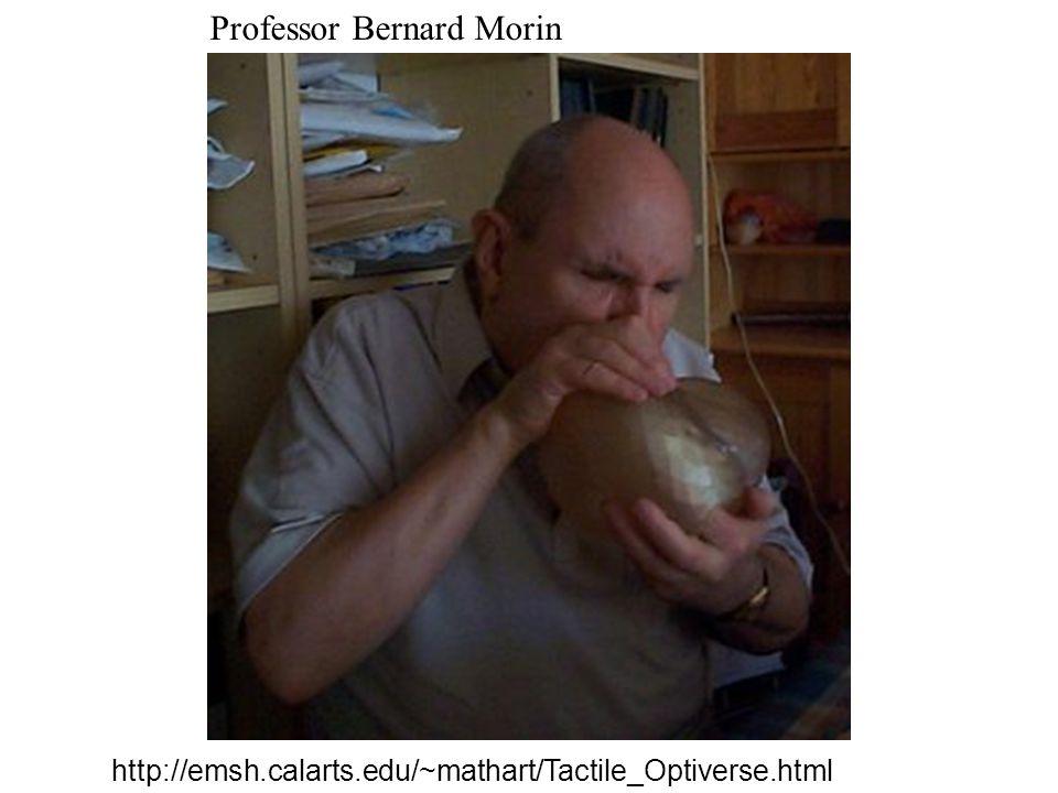 http://emsh.calarts.edu/~mathart/Tactile_Optiverse.html Professor Bernard Morin