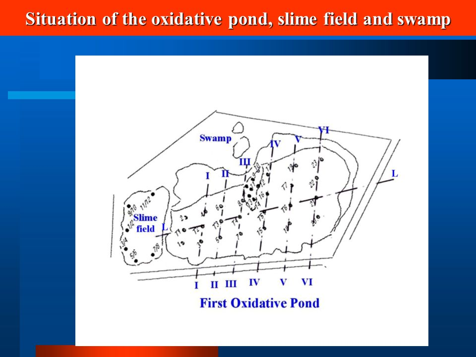 Situation of the oxidative pond, slime field and swamp
