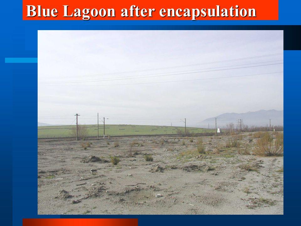 Blue Lagoon after encapsulation