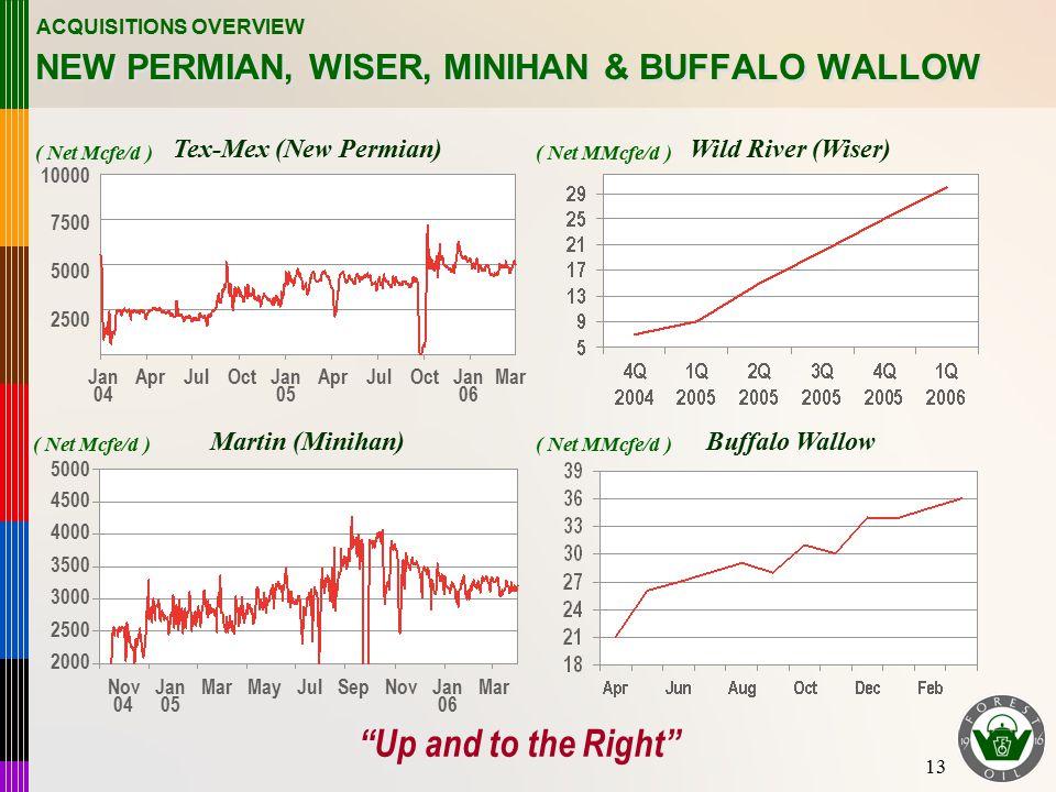 13 NEW PERMIAN, WISER, MINIHAN & BUFFALO WALLOW Tex-Mex (New Permian)Wild River (Wiser) Martin (Minihan)Buffalo Wallow ACQUISITIONS OVERVIEW Jan 04 Ap