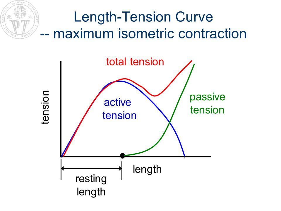 Length-Tension Curve -- maximum isometric contraction tension length total tension active tension passive tension resting length