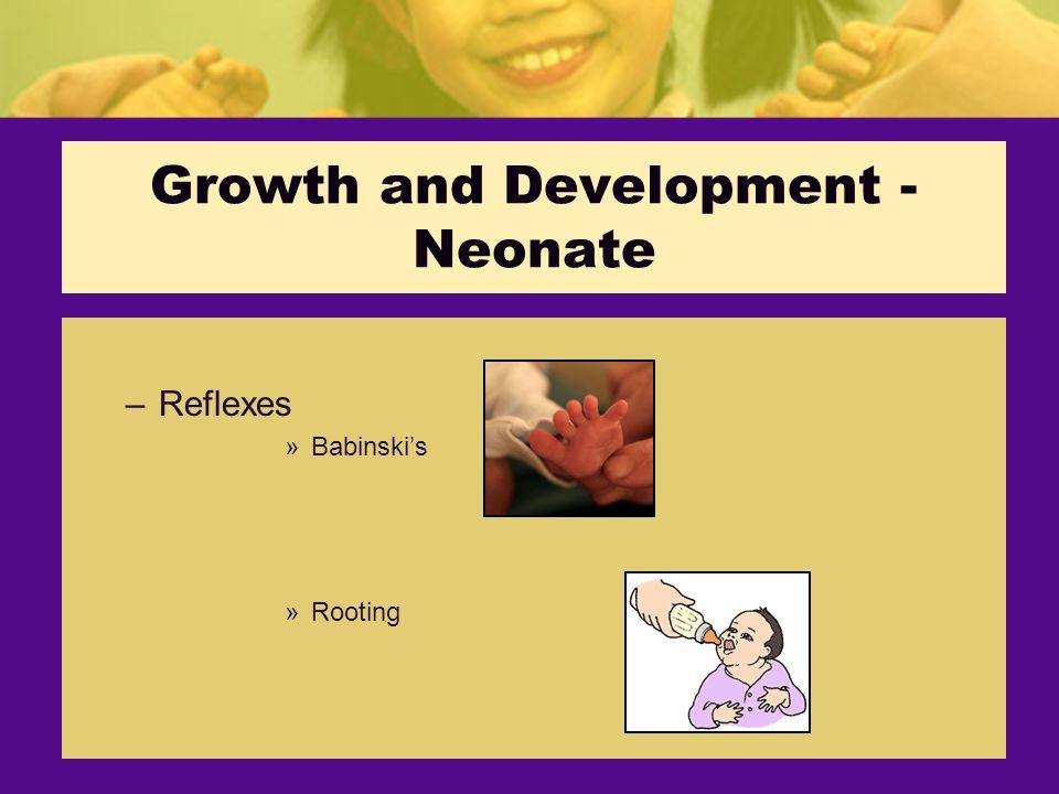 Growth and Development - Neonate –Reflexes »Babinski's »Rooting