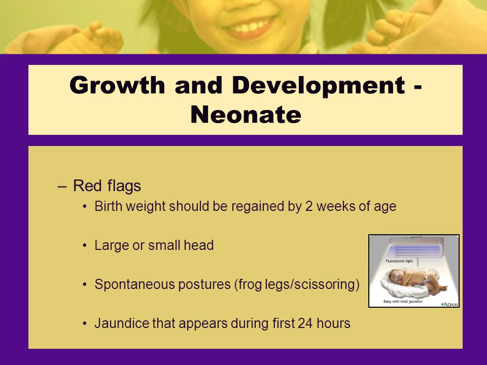 Growth and Development - Neonate –Red flags Birth weight should be regained by 2 weeks of age Large or small head Spontaneous postures (frog legs/scissoring) Jaundice that appears during first 24 hours