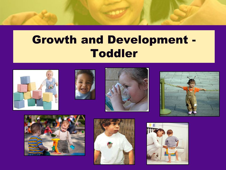 Growth and Development - Toddler