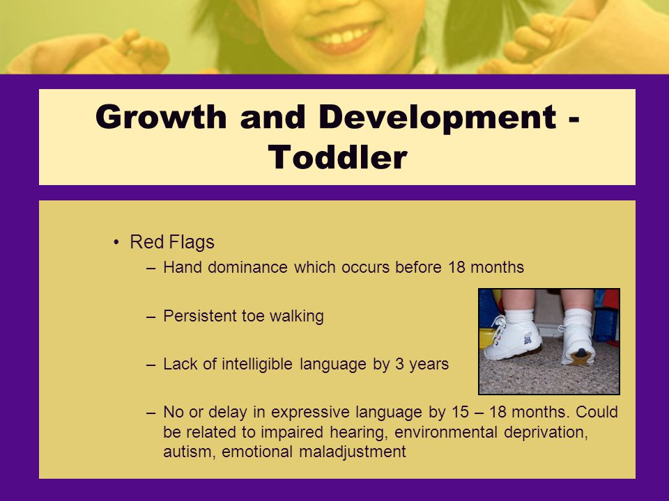 Growth and Development - Toddler Red Flags –Hand dominance which occurs before 18 months –Persistent toe walking –Lack of intelligible language by 3 years –No or delay in expressive language by 15 – 18 months.