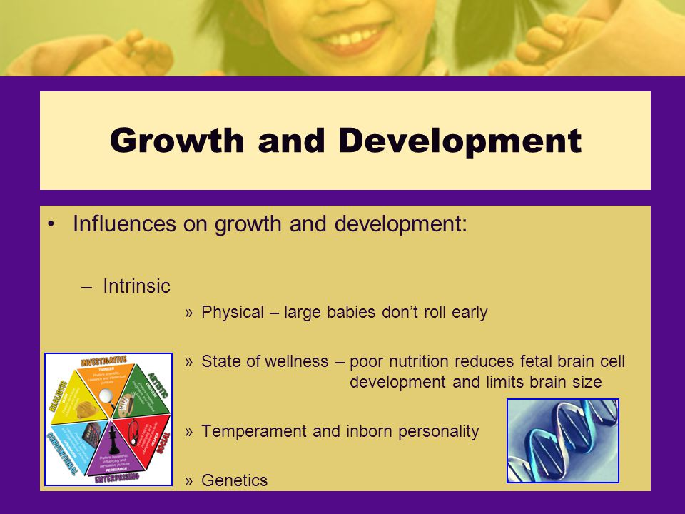 Growth and Development Influences on growth and development: –Intrinsic »Physical – large babies don't roll early »State of wellness – poor nutrition reduces fetal brain cell development and limits brain size »Temperament and inborn personality »Genetics