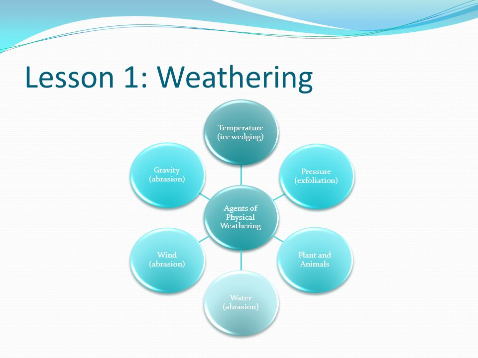 Lesson 1: Weathering Agents of Physical Weathering Temperature (ice wedging) Pressure (exfoliation) Plant and Animals Water (abrasion) Wind (abrasion)