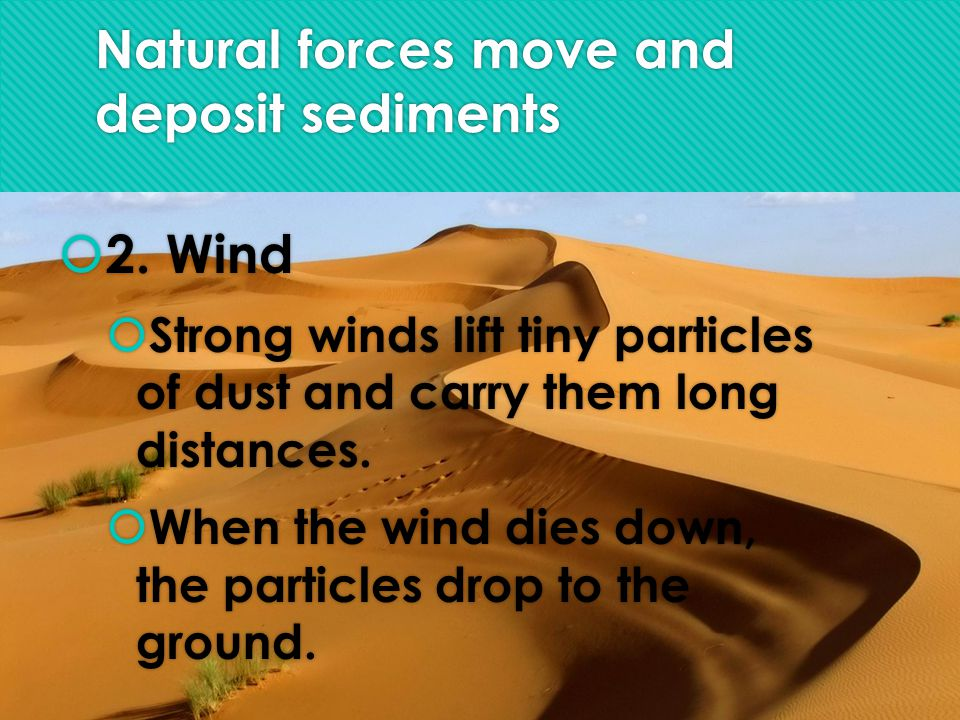Natural forces move and deposit sediments  2.