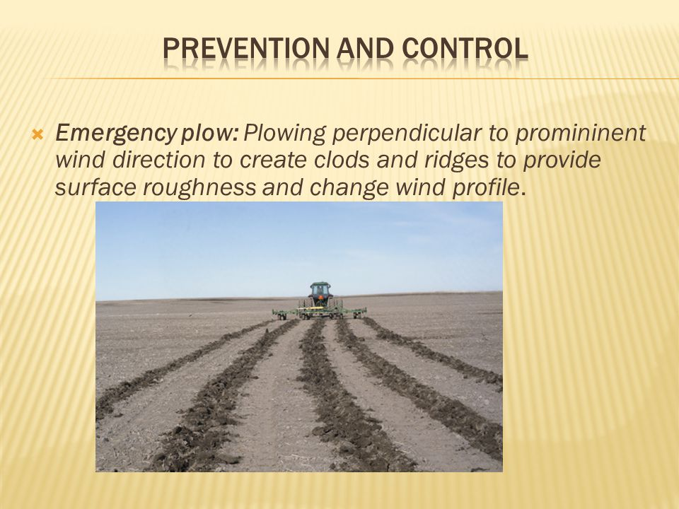  Emergency plow: Plowing perpendicular to promininent wind direction to create clods and ridges to provide surface roughness and change wind profile.
