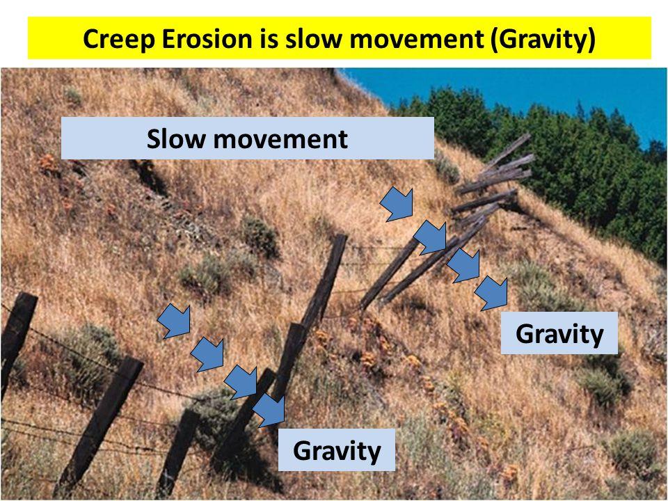 Creep Erosion is slow movement (Gravity) Gravity Slow movement