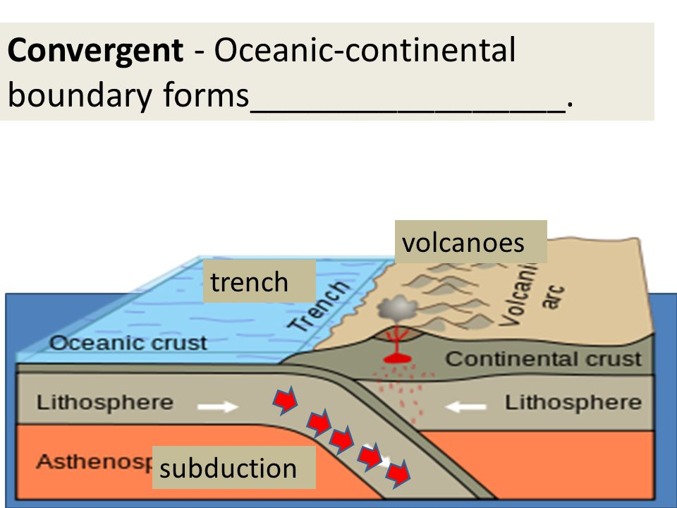 Convergent - Oceanic-continental boundary forms_________________. trench volcanoes subduction