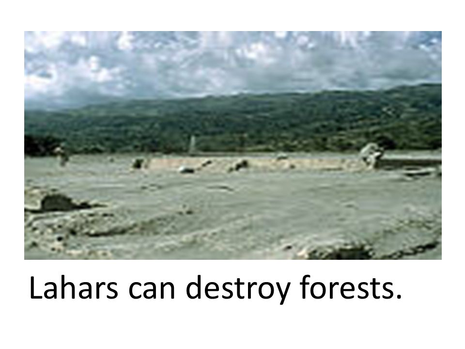Lahars can destroy forests.