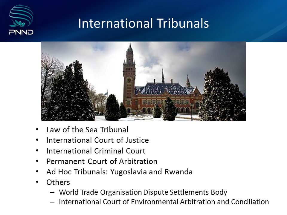 International Tribunals Law of the Sea Tribunal International Court of Justice International Criminal Court Permanent Court of Arbitration Ad Hoc Tribunals: Yugoslavia and Rwanda Others – World Trade Organisation Dispute Settlements Body – International Court of Environmental Arbitration and Conciliation